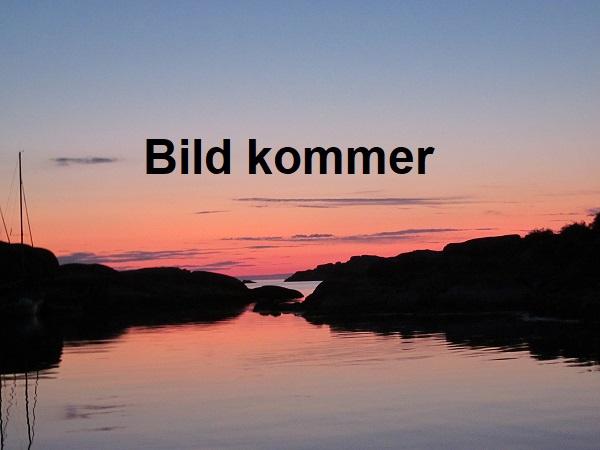 båt till gotland från västervik